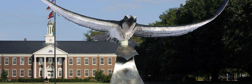 apply to uncw apply for undergraduate admission