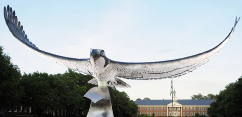 Seahawk Sculpture on UNCW Campus
