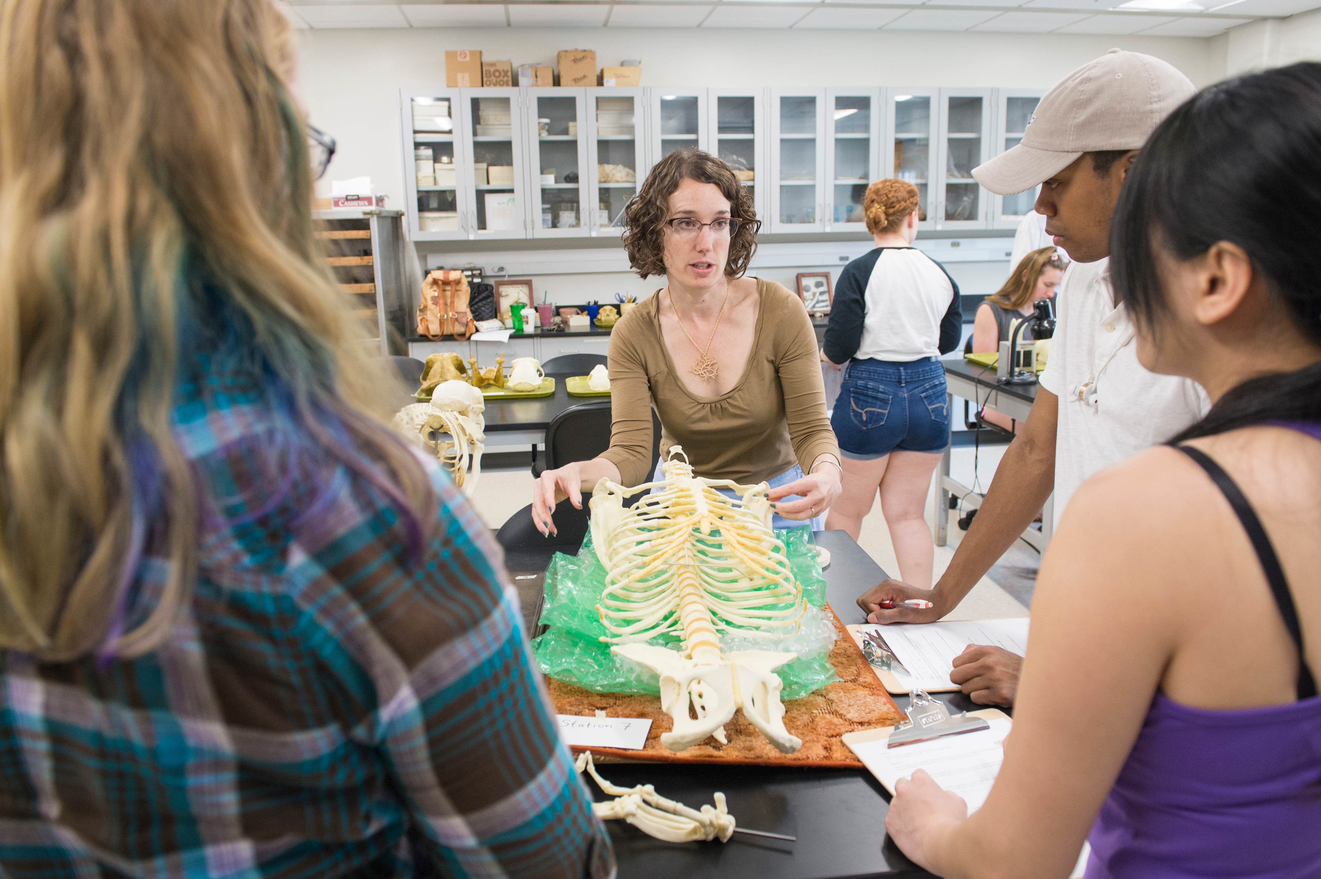 Unc School Of Nursing >> Physical & Biological: Concentrations: Anthropology: UNCW