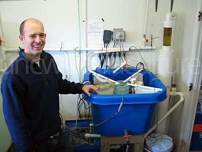 Chris Bentley with intensive rotifer production system.
