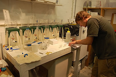 Walker Wright-Moore sets up experimental incubators.
