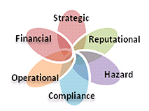 Institutional Risk Management, 5 categories of risk