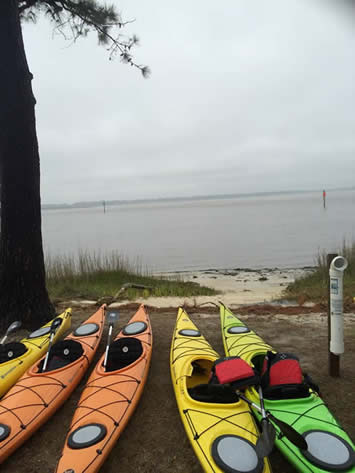 Kayaks beside Cape Fear River