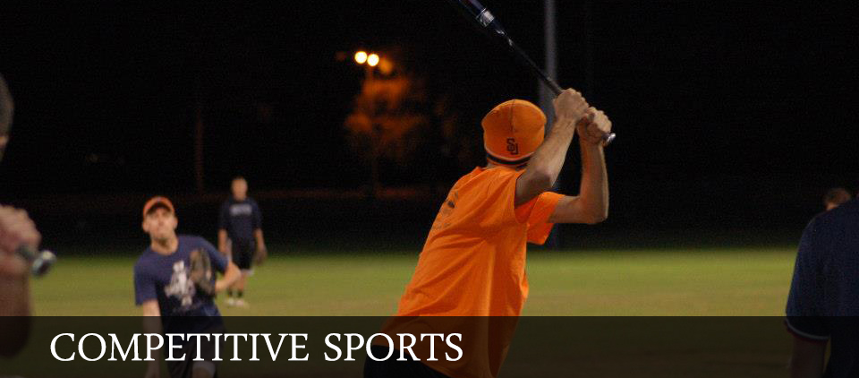 competitive sports baseball picture