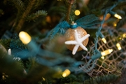 Teal ribbon and a small starfish adorn the holiday tree in Kenan House