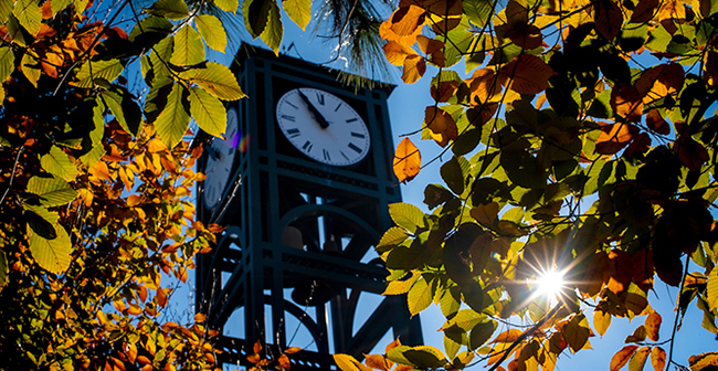 The Clocktower peeks out from trees turning yellow for fall.