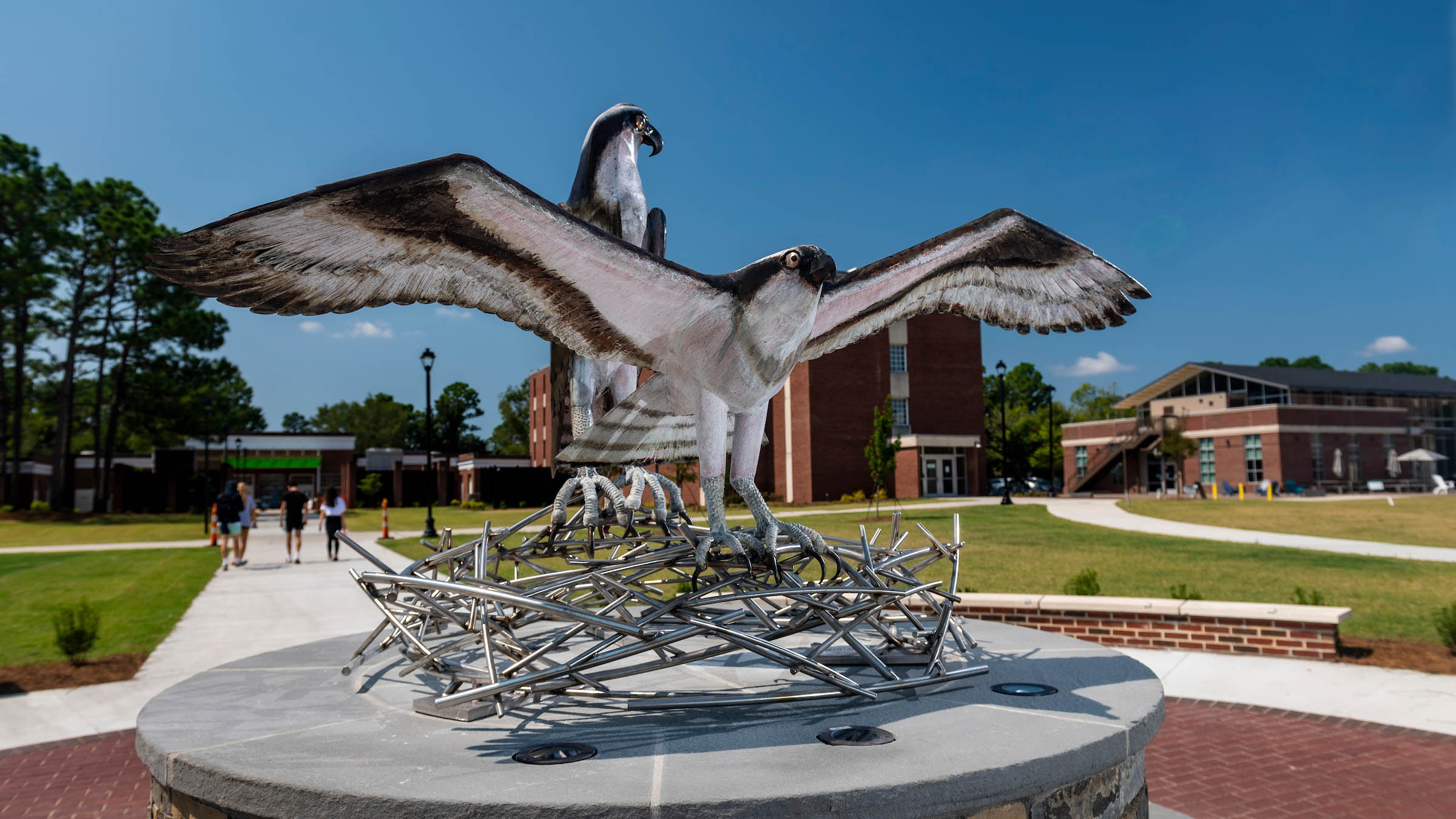 A fledgling Seahawk prepares for its first flight from the nest as its mother looks on in this sculpture by local artist Dumay Gorham.