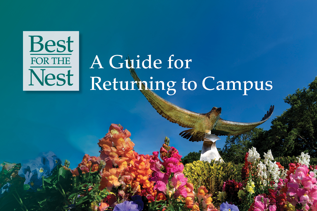 """Photo of the seahawk at the front of campus, amid a colorful bed of flowers and a blue-sky background. Text overlay: """"Best for the Nest: A Guide for Returning to Campus."""""""