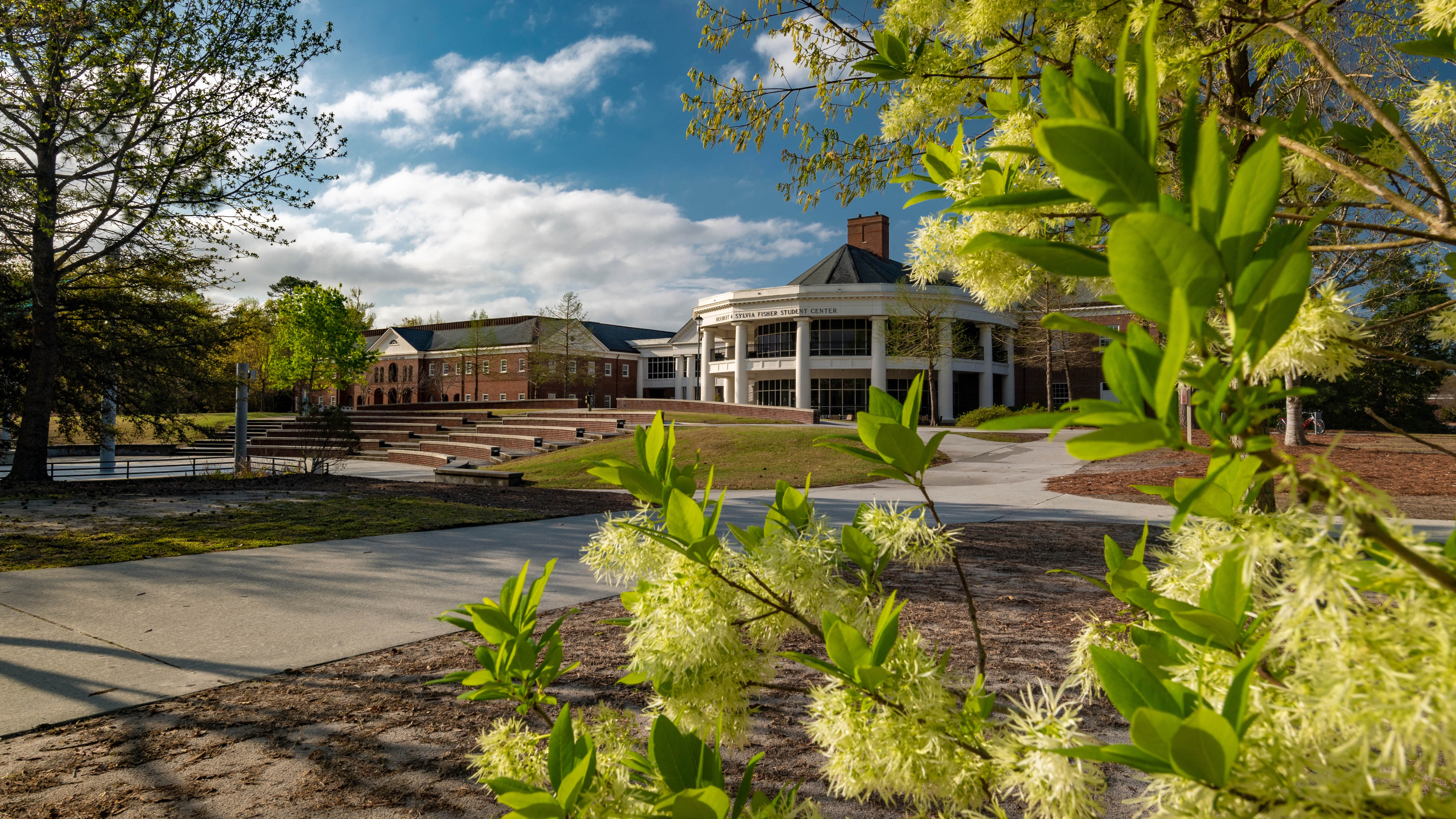 Fisher Student Center, Fisher University and the Amphiteater, with green plants in the foreground.