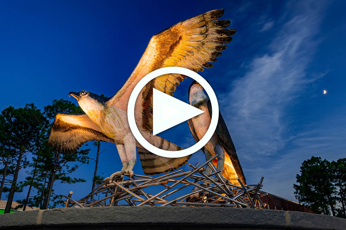 Seahawk leaving the nest statue with video play buttton.