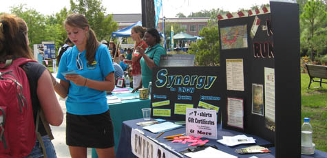 Synergy Table