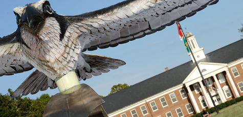 Seahawk in front of Hoggard Hall
