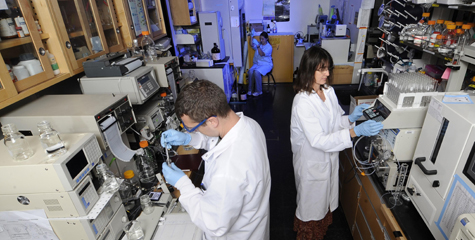 researchers at work in lab