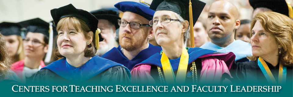 Centers for Faculty Leadership and Teaching Excellence