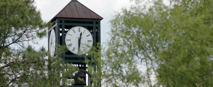 Clocktower and trees