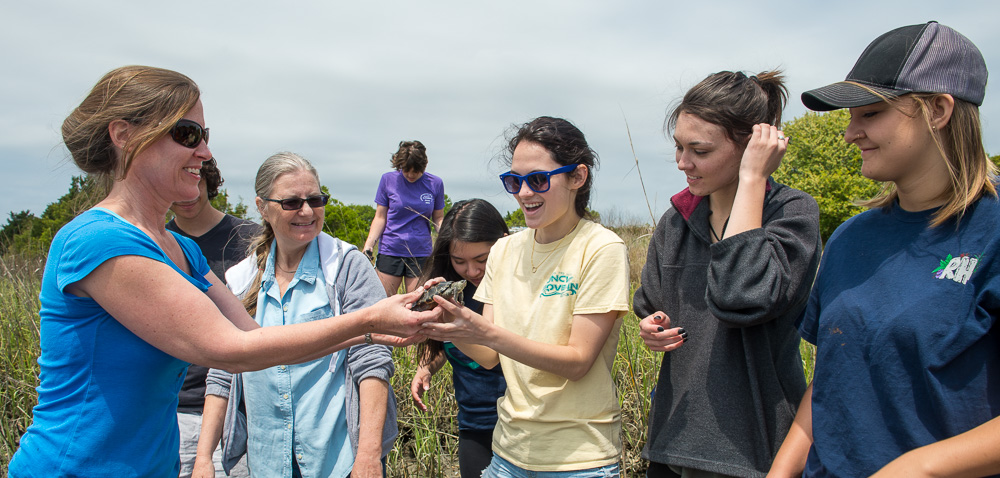 Students study a turtle