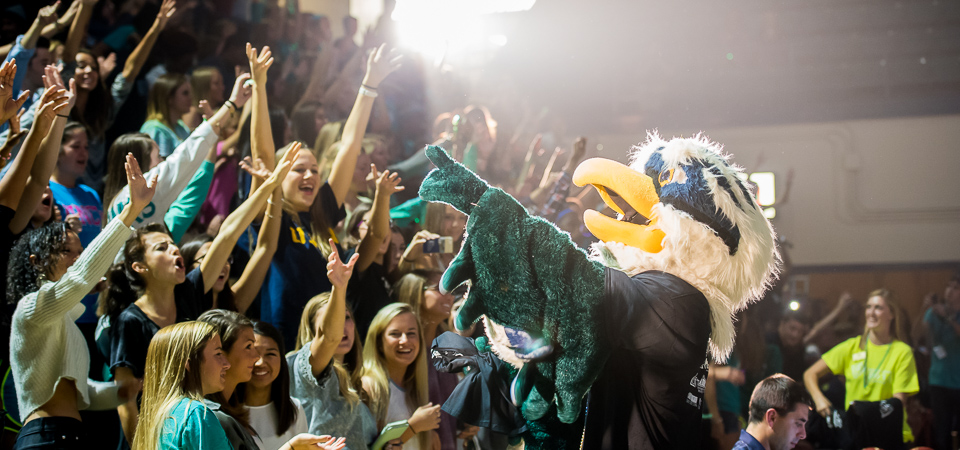 UNCW Sammy C. Hawk
