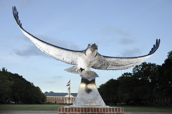 Seahawk in front of UNCW
