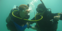 Sea LAB student learning how to dive