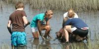MarineQuest Summer Camps at UNCW students in the marsh