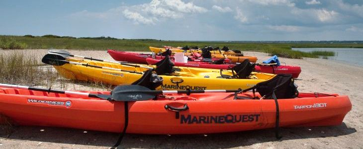 marine biology summer camp scholarship page kayaks on marsh
