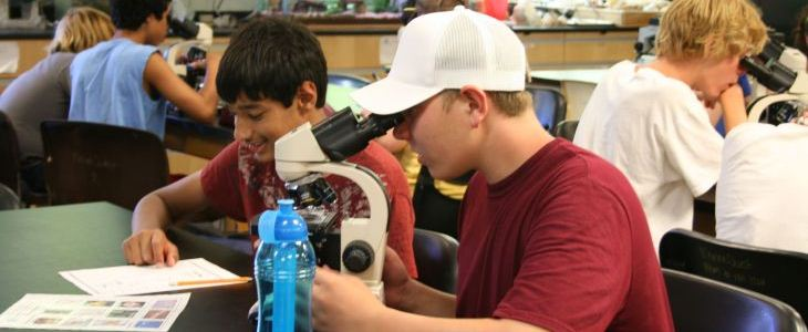 MarineQuest Summer Camp boys looking into a microscope