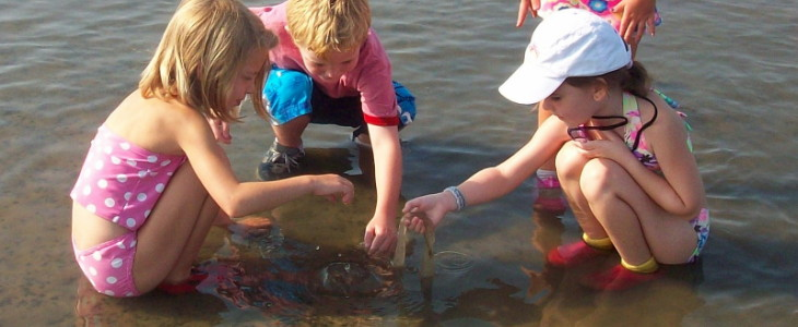 students in marsh holding snail eggs