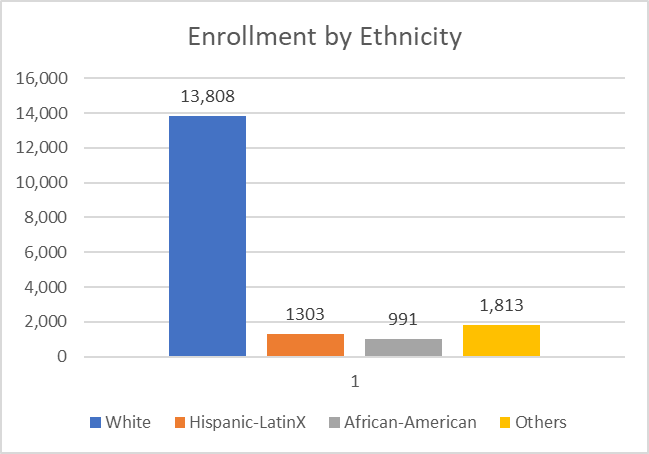 Chart: Enrollment by Ethnicity