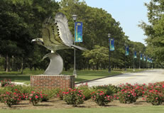 UNCW: Seahawk Sculpture
