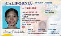Picture of Driver's License